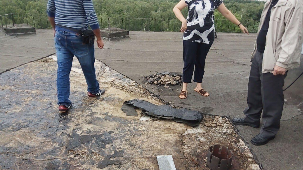 Течет крыша в многоквартирном доме: что делать, куда обращаться и жаловаться